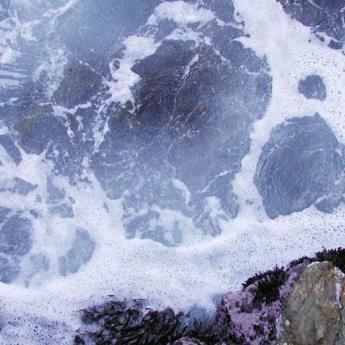 Blue Harvest - Foam Of The Days (Description for download)