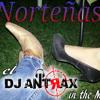 Dj Antrax - Pasito Satevo 2013 [JuneEdition]