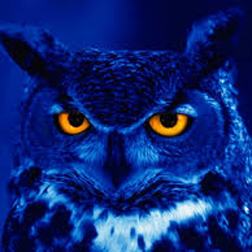 Night Owl ( Prod By Premo Preview )