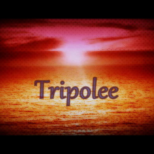 Tripolee Moonlight Remix / Skipper n Sweets