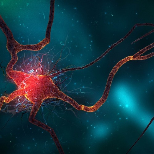 Messy Mass - Neuroflop