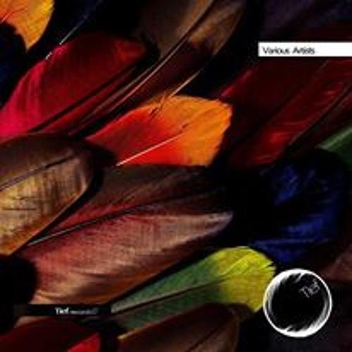 Cajetano - It's This - Tief Records
