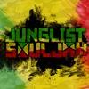 DJ Flys X1 - Jungle / Dnb (ragga Drum and Bass)