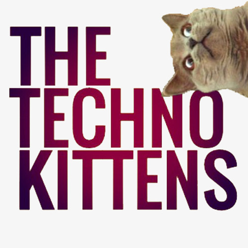 Kittencast 0613 | Thomas Kern
