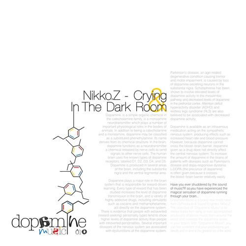 Nikko.Z - In The Dark Room