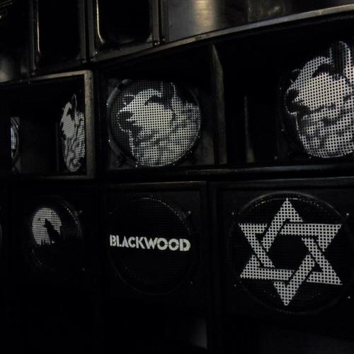 BLACKWOOD SOUNDSYSTEM ERROL BELLOT WRONG MIX
