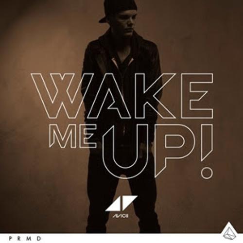 Avicii feat. Aloe Blacc- Wake Me Up (Extended Mix)
