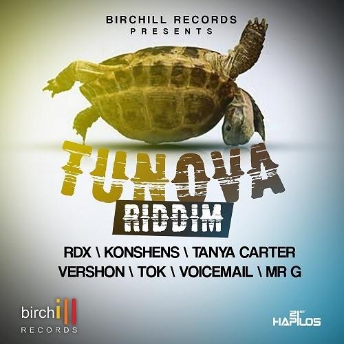 TUN OVA RIDDIM (JUNE 2013) MIX BY DJ BIGFOOT