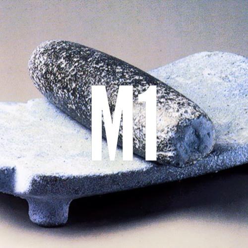metaterismo1