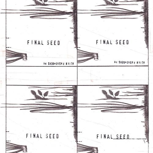 Final Seed (excerpt)