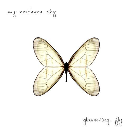 05. Glasswing. Fly