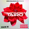 Tairo -