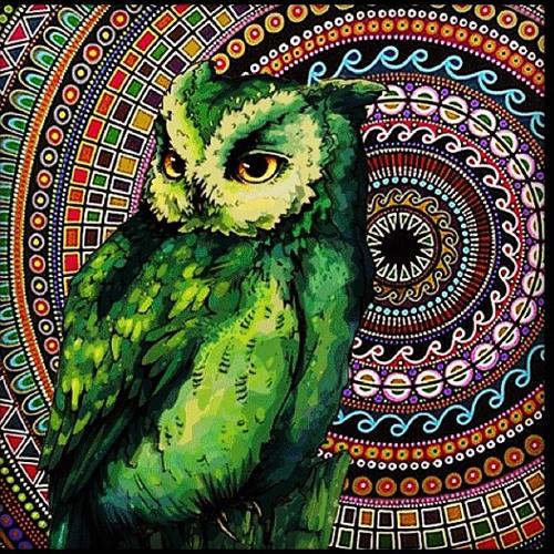 Night Owl Experience - EDC Las Vegas 2013