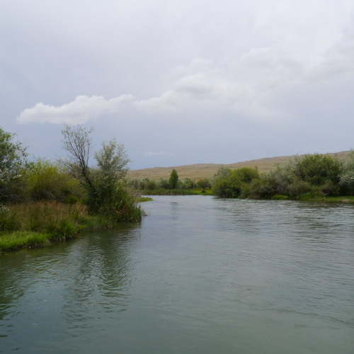 Sounds of the Ters River in the Zhambyl Region of Kazakhstan