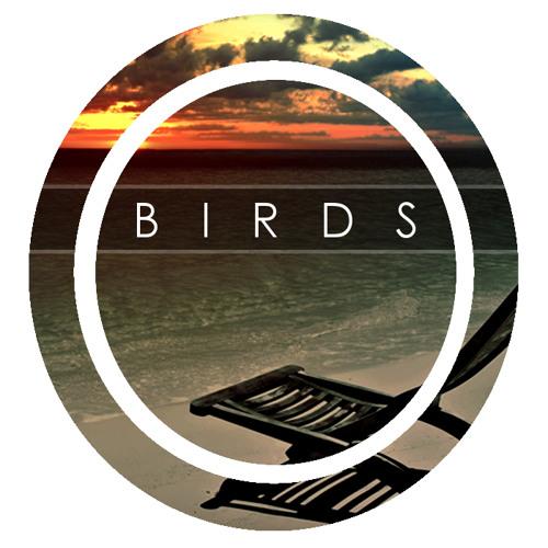 Birds (Original Mix)