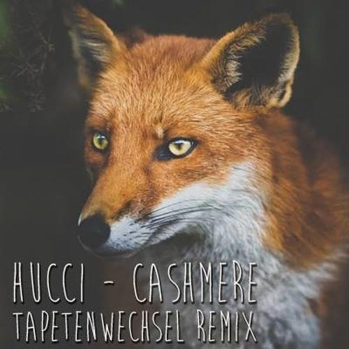 Hucci - Cashmere (Tapetenwechsel Remix)