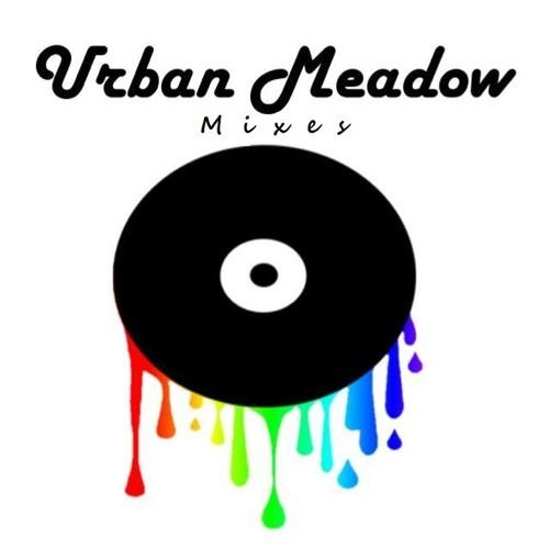 Urban Meadow Electro House Mini Mix