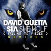 David Guetta - She Wolf (MB Project Vocal Mix) **12.000 DOWNLOADS**
