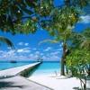 RELAXAR MUSICA Para ESTUDAR 1 Relaxante PIANO Classica Instrumental Estudo Playlist Oceano Musicas