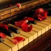 Fiona - Joy - Hawkins - Love - In - Winter - 1st - Movement - Opus - For - Love(muzofon.com)