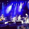 Wilco & Bob Weir -