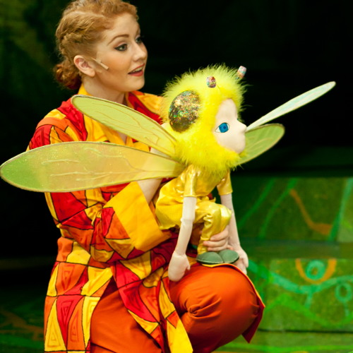 Butterfly - 'The Little Dragon'