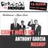 Fatboy Slim vs Macklemore - Ya Mama Can't Hold Us (Anthony Garcia Mashup)