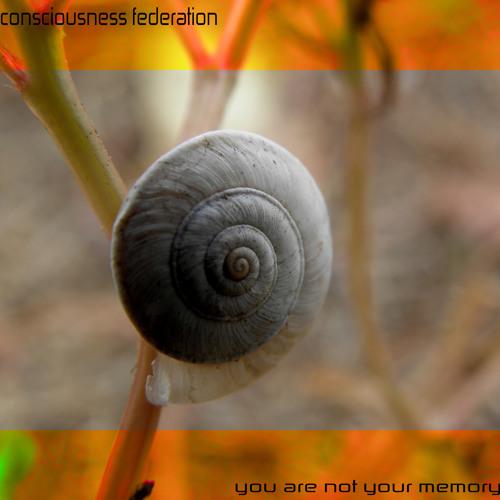 consciousness federation-You're not your memory