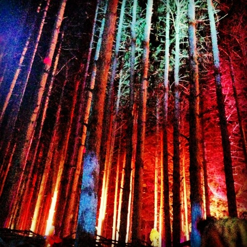Dub Knight Live @ Electric Forest - Silent Disco