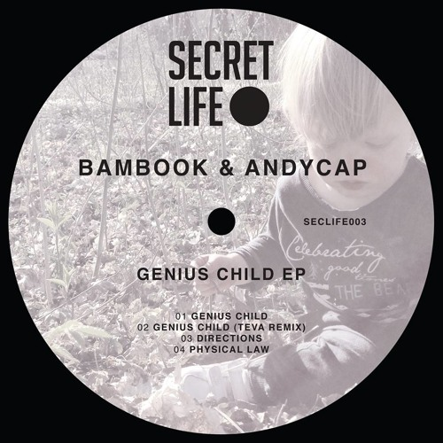Bambook & Andycap – Directions [Secret Life]
