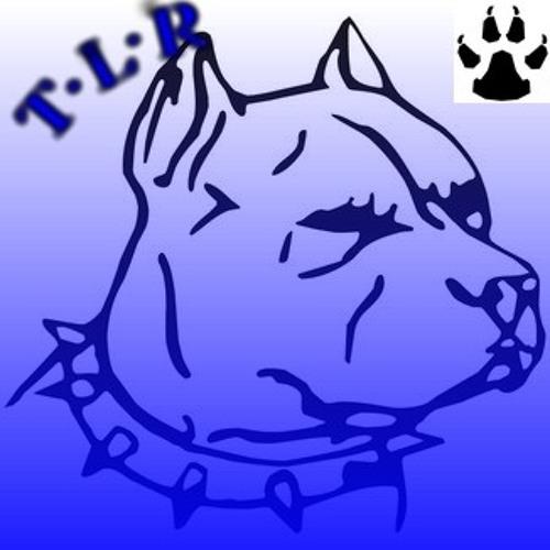 """Datson Feat Diken&Tency """"Dogside TLR""""_2013"""