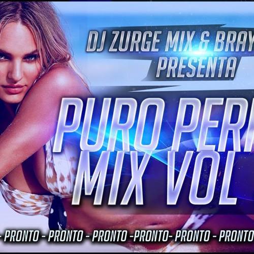 Puro Perreo Mix Vol. 31 (Deejay Zurge FT. Brayan Dj)