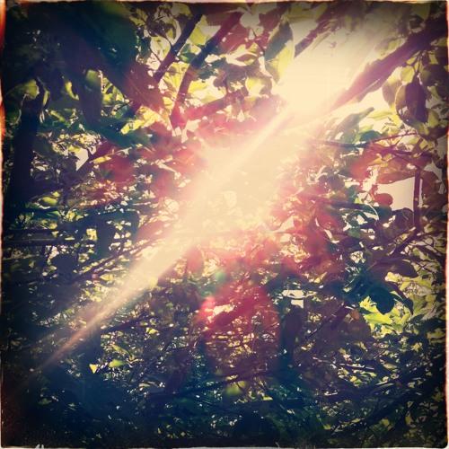 Lay-Far - Sun Interlude