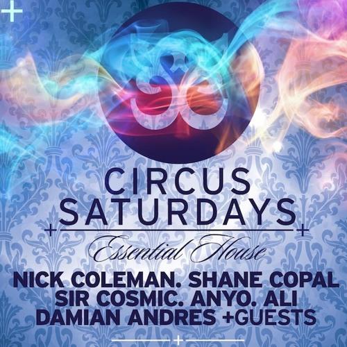 DJ Mix Recorded @ Circus 2-3am June 2013