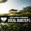 Dubstep Vocal Mix 2013