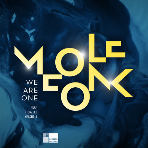 Molefonk - We Are One featuring Tricia Lee Kelshall (Nick Brennan remix) :: teaser