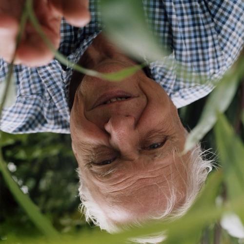 David Attenborough's Life in Alternate Universes