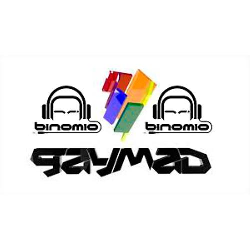 Binomio GayMad 13