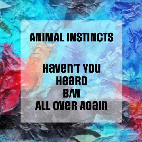 Animal Instincts - Haven't You Heard B/W All Over Again
