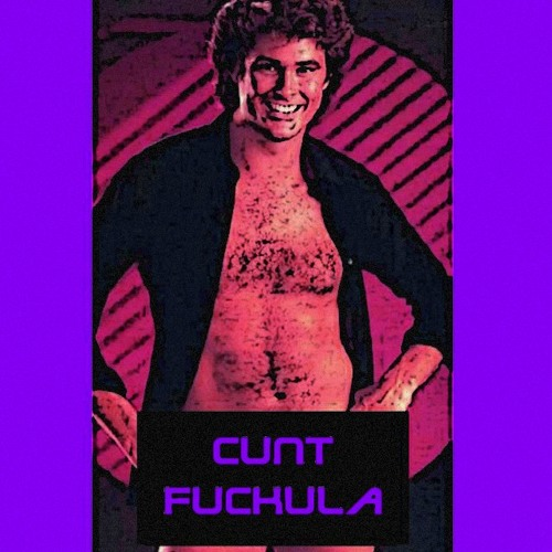 David Hasselhoff - Du (Cunt Fuckula RMX 2013)