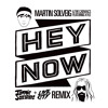 Martin Solveig & The Cataracs - Hey Now feat. Kyle (Tommie Sunshine & Live City Remix)