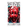 Zen Assumption