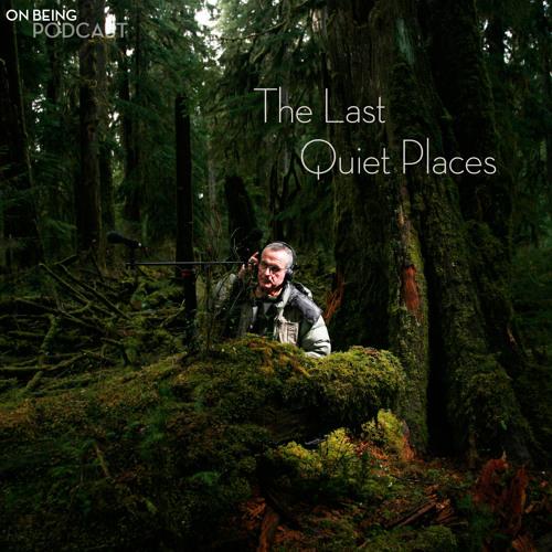 A Guided Aural Hike Through the Hoh Rain Forest with Gordon Hempton