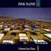 Pink Floyd - Sorrow MP3 Download