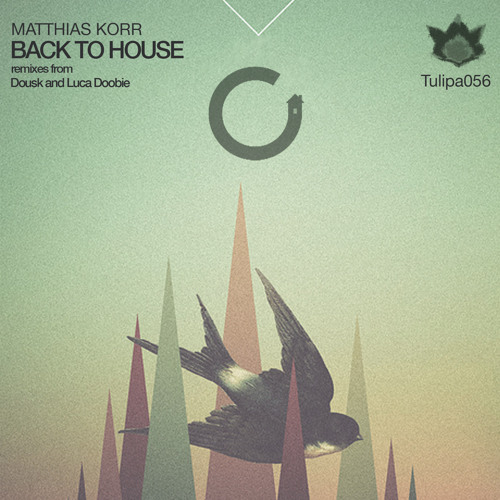 Matthias Korr - Back To House (Luca Doobie Haunted House Remix)