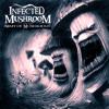 Infected Mushroom - Nothing To Serve My Wanted Thirst (AuraRora Mashup)