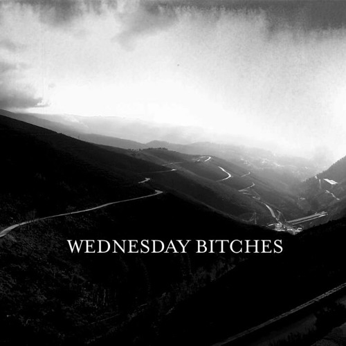 Wednesday Bitches - Shooting Blanks (Around The Roundabout)