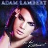 Adam Lambert - For Your Entertainment - Universal Orlando 2013