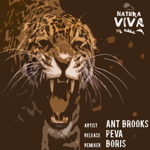 Ant Brooks - Peva (Boris Remix) [Natura Viva]