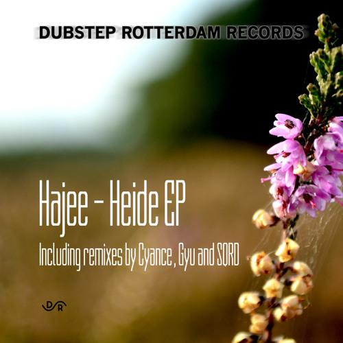 DSR006-  Hajee - Heide (SQRD Remix)